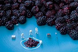 blackberryCSI
