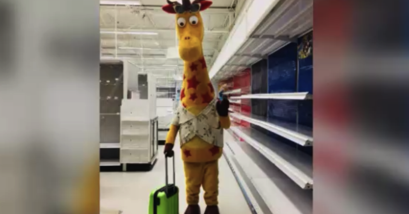 Geoffrey the Giraffe leaves Toys R Us