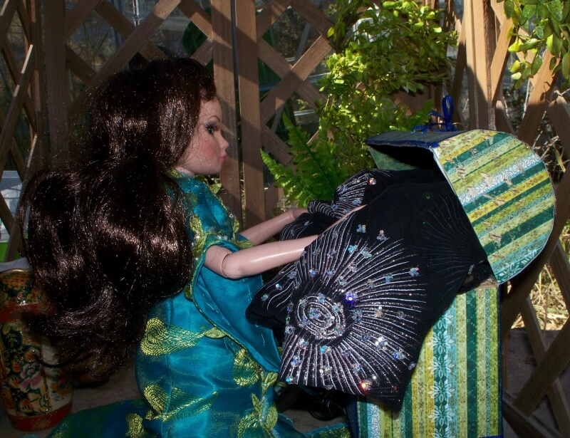 One day, Ellowyne discovers a gown worthy of a princess tucked away in a trunk.