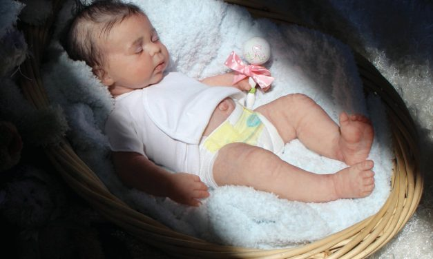 Donna RuBert's new company focuses on limited-edition silicone babies