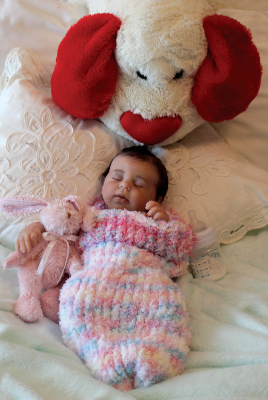 silicone doll Sarah with stuffed animals